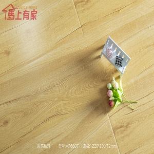 强化地板—肤感系列 FM6607