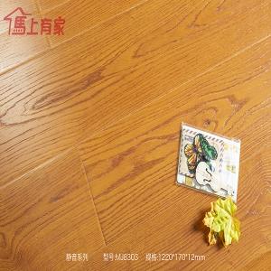 厦门强化地板—静音系列 MJ8303