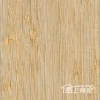 M1026富贵竹子