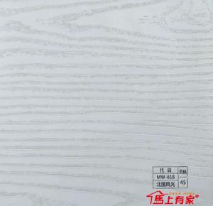 北国风光MW-618